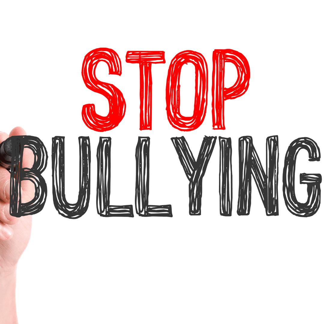 bullied, bullying, bully behavior,