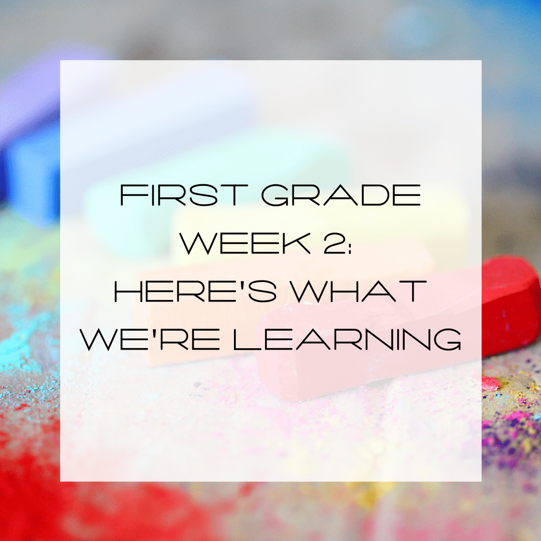 first grade, elementary education, here's what we're learning